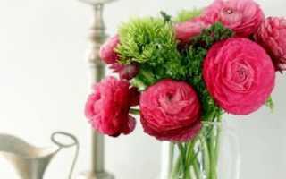 Красивые декоративные цветы для украшения дома