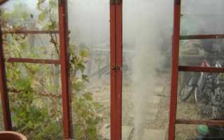 Чем обработать теплицу из поликарбоната осенью на зиму