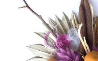 Сухоцветы: сухие растения и цветы для композиций и букетов
