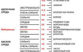 Кислотность почвы и шкала pH грунта