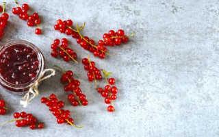 Выращиваем красную и белую смородину