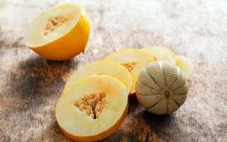 Как называется плод дыни: ягодой, овощем или фруктом