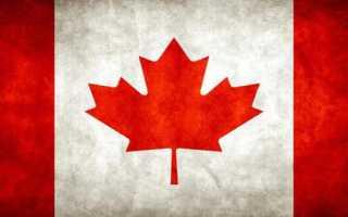 Канадский клен: описание красного дерева, посадка и уход