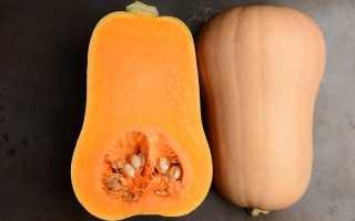 Описание и пищевая ценность сорта тыквы баттернат