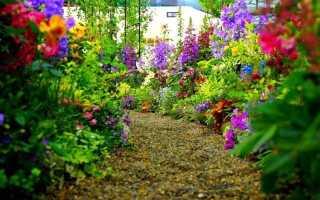 Прогулочная зона – цветник с размахом и петляющими дорожками