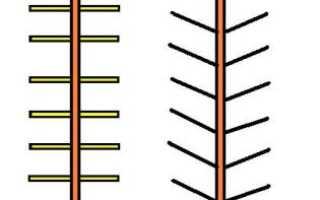 Правила подбора и установки опор для вьющихся растений