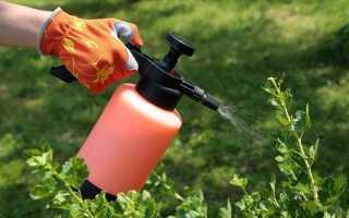Летняя обработка сада биопрепаратами от вредителей