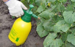 Инструкция по применению гумата калия для удобрения почвы