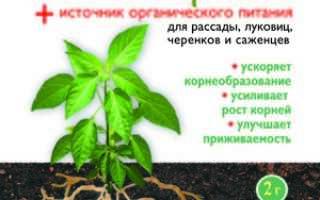 Препарат Гетероауксин: инструкция по применению