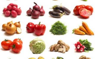 Список овощей по алфавиту: названия, описание, польза и вред