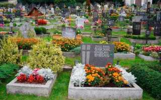 Цветы памяти. Растения, которые можно посадить на могиле