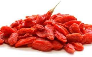 Годжи – целебная ягода