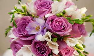 Цветы розы: морфологическое описание растения