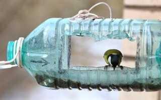Как сделать кормушку для птиц из пластиковой бутылки на 5 литров