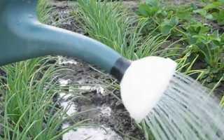 Препарат Байкал ЭМ-1: как приготовить и применить удобрение