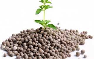 Фосфорные удобрения: виды, особенности, сферы применения
