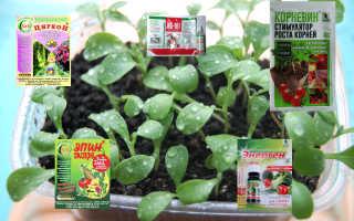 Активаторы и стимуляторы роста растений: перечень средств