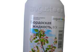 Правила приготовления раствора бордосской жидкости и её состав