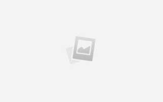 Как вырастить виноград: советы по уходу и выращиванию